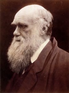 The Disruptors - Portrait of Charles Darwin